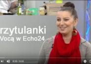 Przytulanki-Głaskanki z Vocą w Echo24 TV