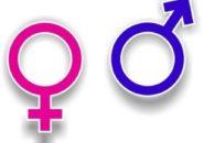 Deklaracja Praw Seksualnych