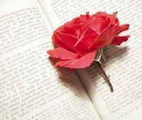 139967_rosenbook.jpg